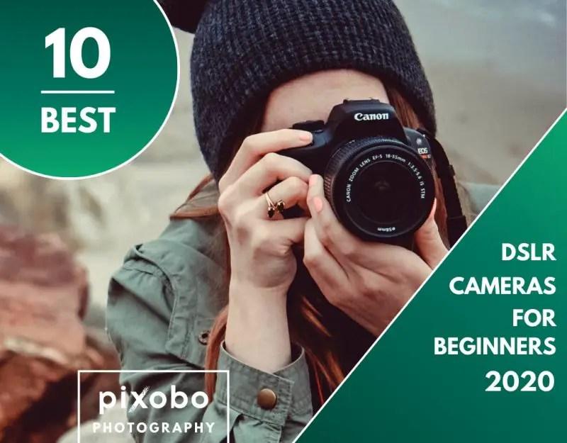 Top 10 Best DSLR Cameras for Beginners
