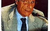 Borrello suggerisce la via per estendere la rete del metano a Pizzo a Nord della Villa