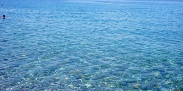Costituito l'Ente Parchi Marini: accorpa le cinque strutture attuali