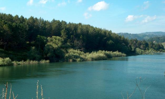 Festa nell'oasi dell'Angitola alla scoperta della natura