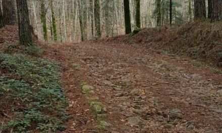 I misteriosi sentieri di pietra delle Serre Calabresi.