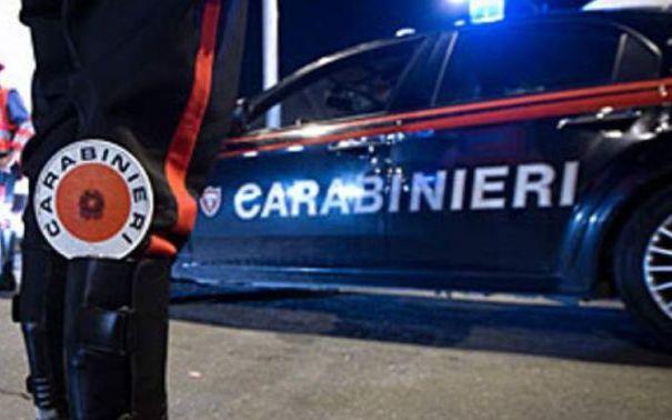 Orrore in Calabria. Cagnolino ucciso a colpi di pistola in strada