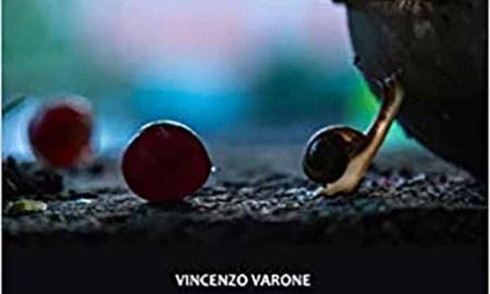 La Calabria dei mille silenzi e la straordinaria figura di Natuzza Evolo nel nuovo libro di Vincenzo Varone – Calabria Post
