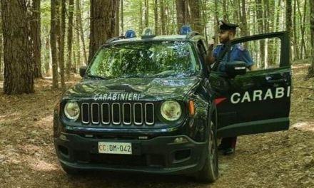 Troppi dispersi a caccia di funghi in Calabria: ecco il decalogo dei carabinieri