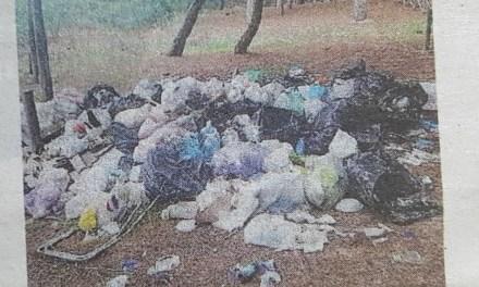 Colamaio, i rifiuti restano nella pineta