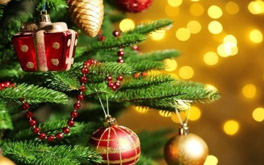 Pizzo si prepara al Natale, ecco gli eventi che animeranno la città napitina – strill.it