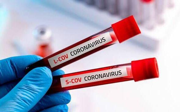 Coronavirus, preoccupa il Vibonese: ecco i maggiori focolai
