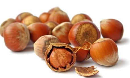 Scoperta la proteina che causa l'allergia alla nocciola