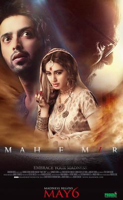 mah e mir pakistani movie poster