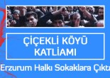 30 Ekim 1993 PKK'nın üstlendiği Çiçekli Köyü katliamı