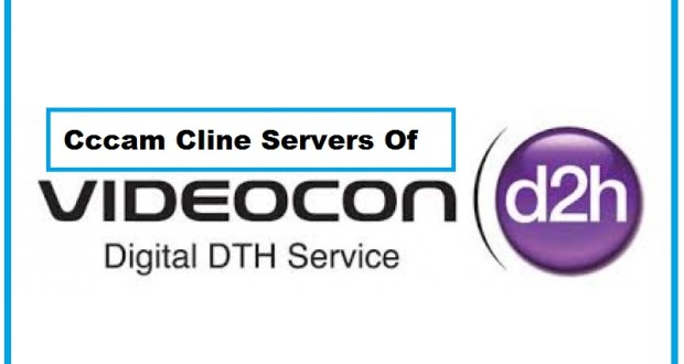 videocon d2h hd cccam cline providers