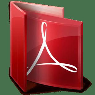 Acrobat Reader X (10.0.1)