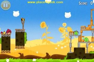 Angry Birds Seasons Summer Pignic Niveau 1
