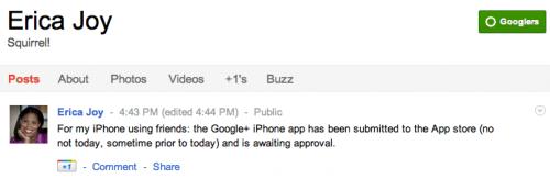 Bientôt une application Google+ pour iPhone