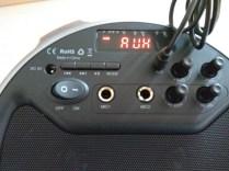 L'entrée auxiliaire est disponible au besoin si vous utilisez un appareil sans Bluetooth pour lire votre musique