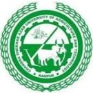 CSAUK Logo