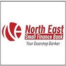 NESFB Logo