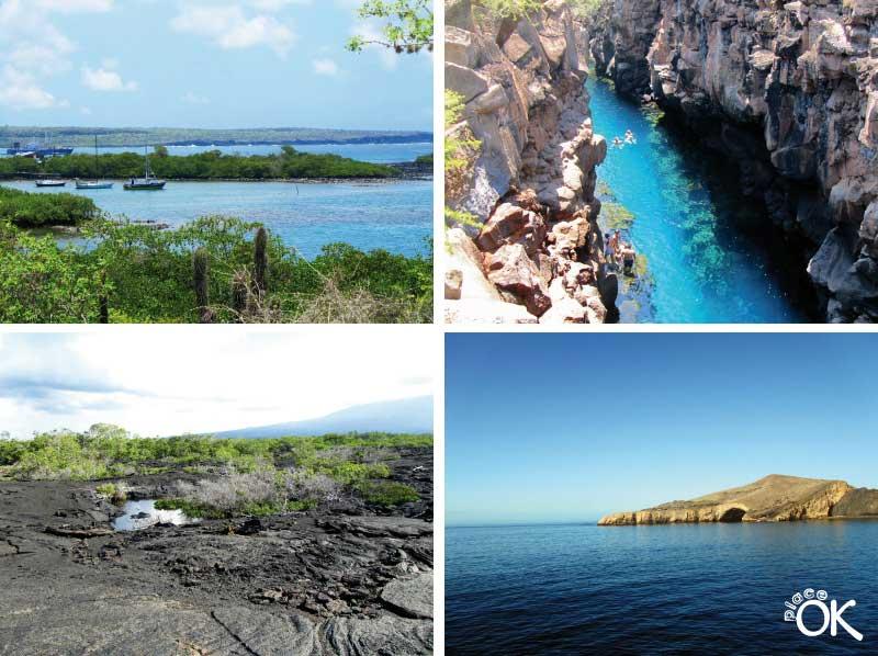 crucero por Galapagos
