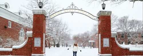Image result for keene state arch