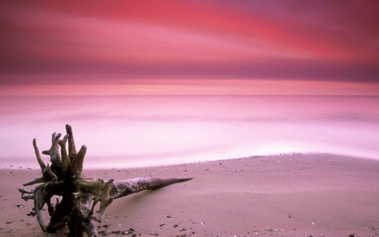 Pink Sand3