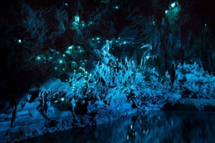 Waitomo Caves-Photo by Joseph Michael (11)