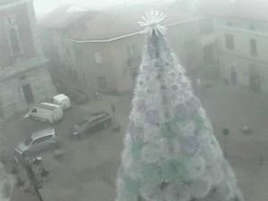 ecoalbero webcam_1