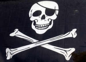 8 Rules For Tackling Piracy and Building a Business Image