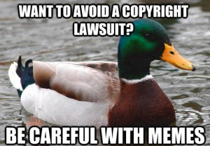 Advice Mallard Image