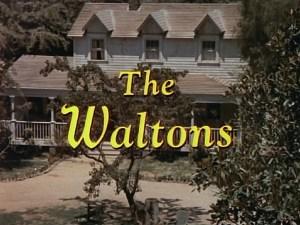 The Waltons Image