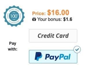 PayPal's Essay Mill Ban Has Had No Impact Image