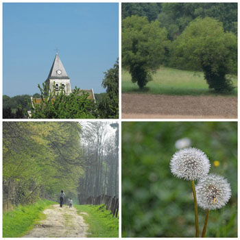 Things to do in Rosoy France