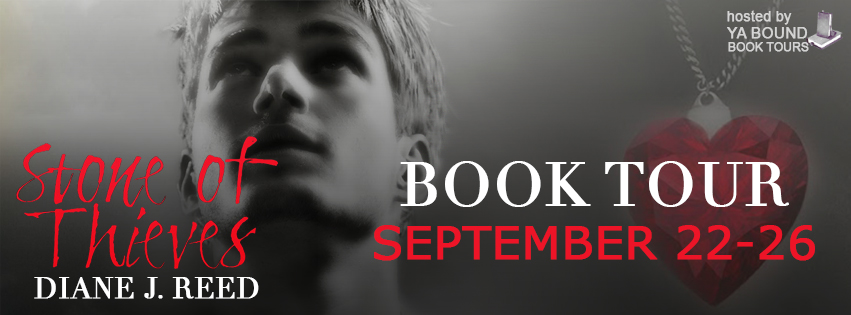 Book tour banner for Stone of Thieves