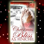 Christmas Bliss – Book Promo