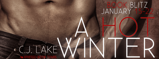 Blog tour banner for A Hot Winter