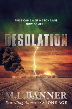 Desolation book cover