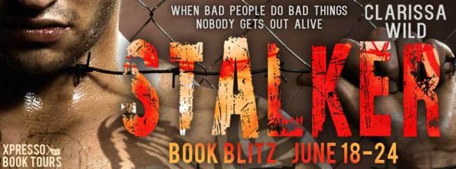 Stalker book banner