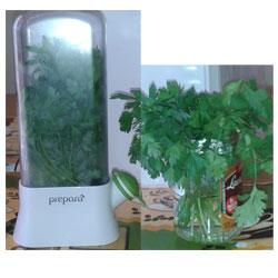 Herb saver experiment