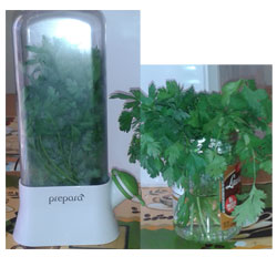 Herb saver experiment