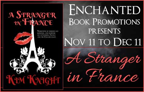 Stranger in France book banner