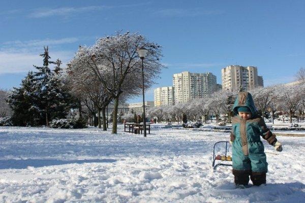 Activitati de iarna