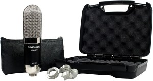 vinjet 300x160 - Home Studio Vocal Microphone Guide