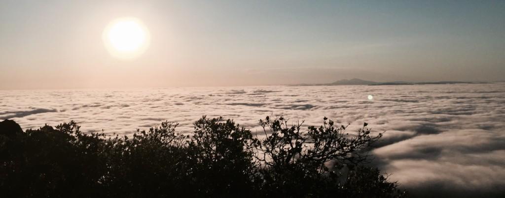 Planetary Philosophy Sunrise