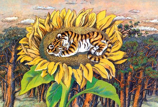 на подсолнухе спал тигрёнок