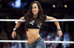 ¿Estaría AJ Lee en WWE Evolution?