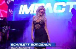 Don Callis comenta sobre la controversia del segmento de Scarlett Bordeaux en Impact Wrestling