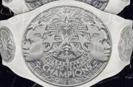 Los campeonatos por parejas femeninos de WWE serían solo para la división de WWE RAW