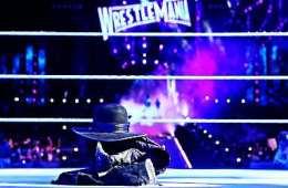 Roman Reigns vs The Undertaker Wrestlemania 33