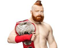 por que WWE permite luchar a Sheamus con estenosis espinal.