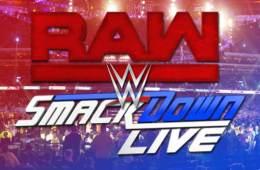 WWE Brands