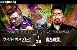 NJPW Best of Super Juniors